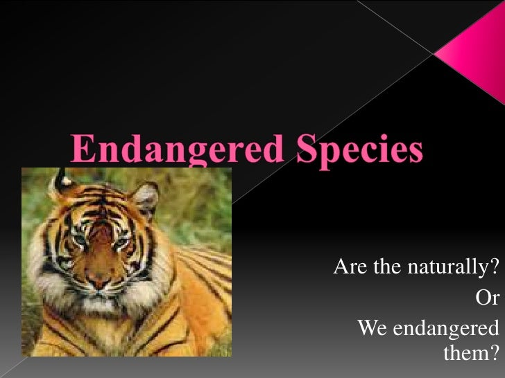 Endangered Species<br />Are the naturally?<br />Or<br />We endangered them?<br />