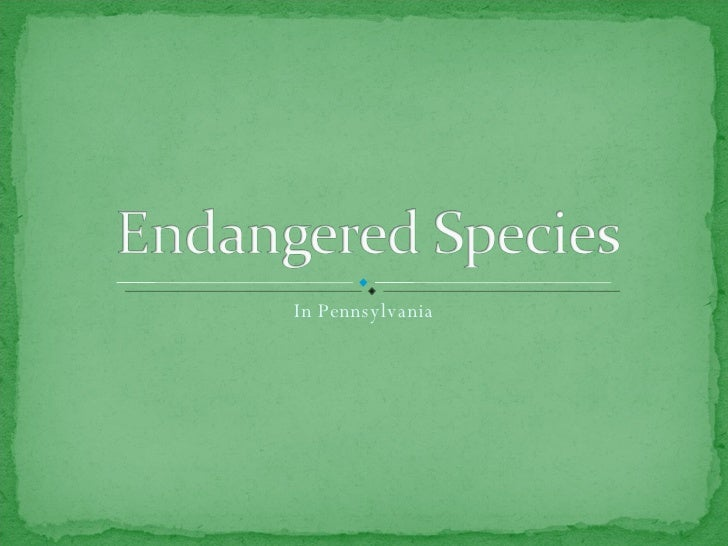 Endangered and Threatened Species in PA