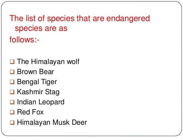Endangered Species - Mammals