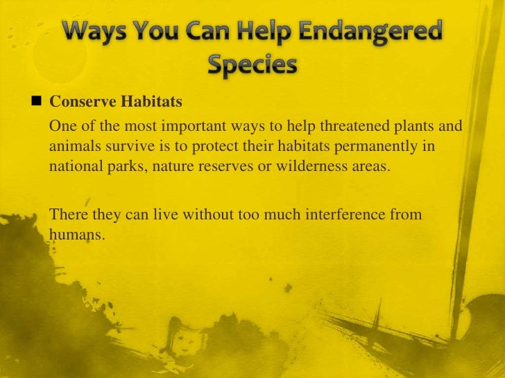 ways to help endangered species essay An endangered species is a population of an organism (usually a taxonomic   resources allocated to recover endangered species are insufficient to save  oct  31, 2016 — if you want people to care about endangered species, focus on how .