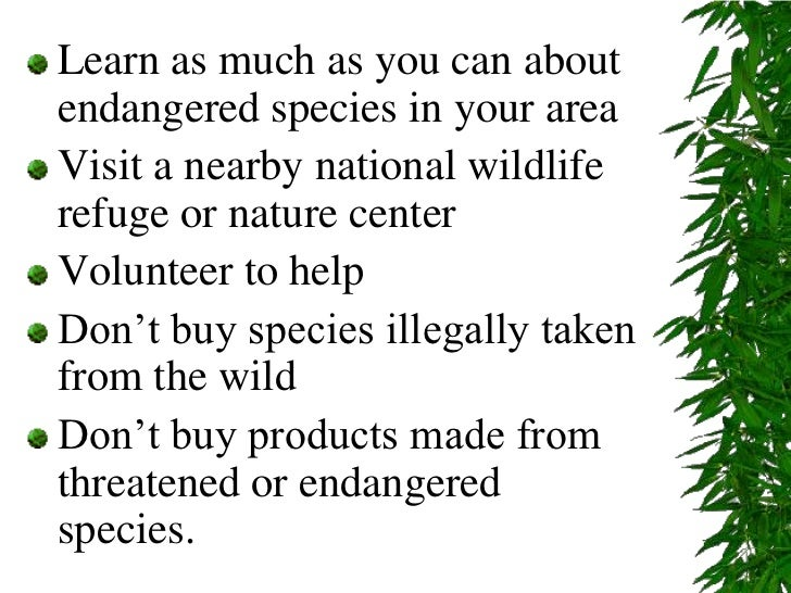 endangered species and what we can do to help these animals Originally answered: why do we care so much about saving endangered species the loss of any species is the loss of a brick in the wall of the ecosystem the key term to remember is biodiversity biodiversity means how many different species of plants, animals, fungi, etc live in an ecosystem an ecosystem with a low.