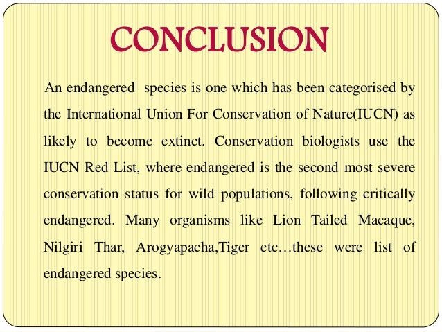 essays conclusion of endangered species Importance of endangered species in our world importance of endangered species in our world introduction the term endangered is used by international and national organizations to define plants and animals currently in danger of becoming extinct although the term endangered is universally used, the definition of an endangered species.