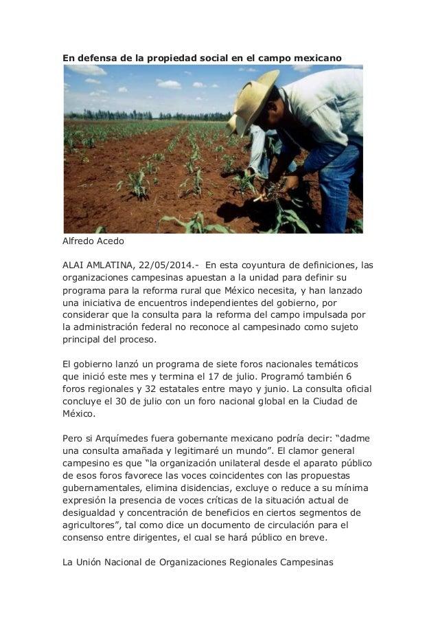 En defensa de la propiedad social en el campo mexicano Alfredo Acedo ALAI AMLATINA, 22/05/2014.- En esta coyuntura de defi...