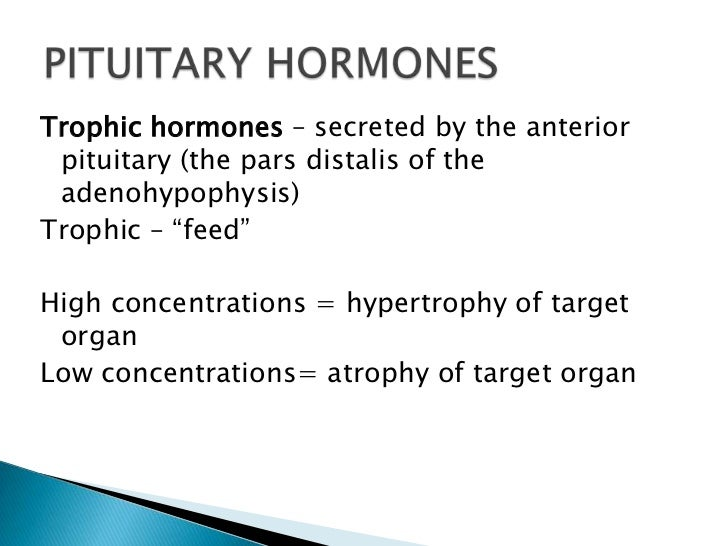 """Trophic hormones – secreted by the anterior pituitary (the pars distalis of the adenohypophysis)Trophic – """"feed""""High conce..."""