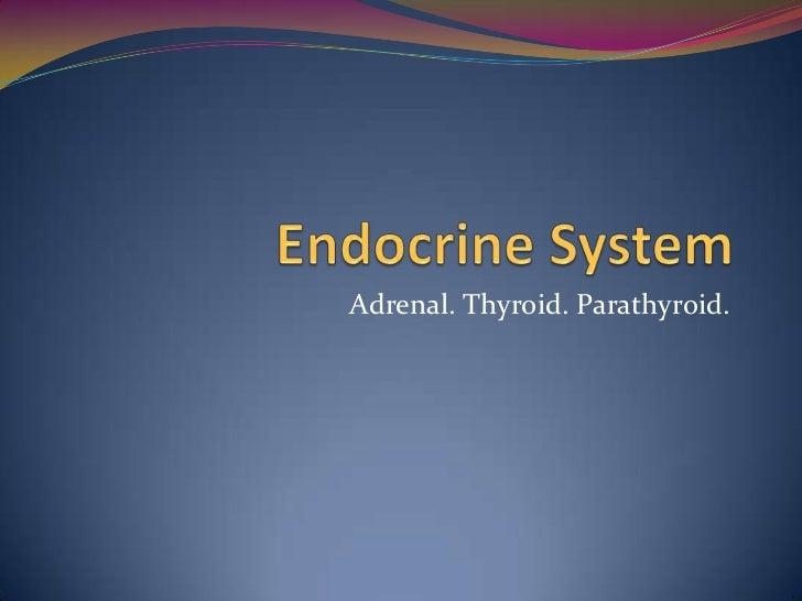 Adrenal. Thyroid. Parathyroid.