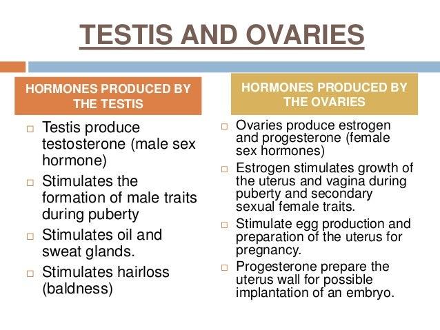low testosterone alternative treatment