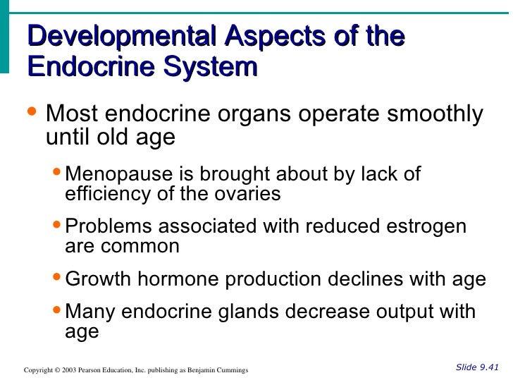 Endocrine system Flashcards | Quizlet