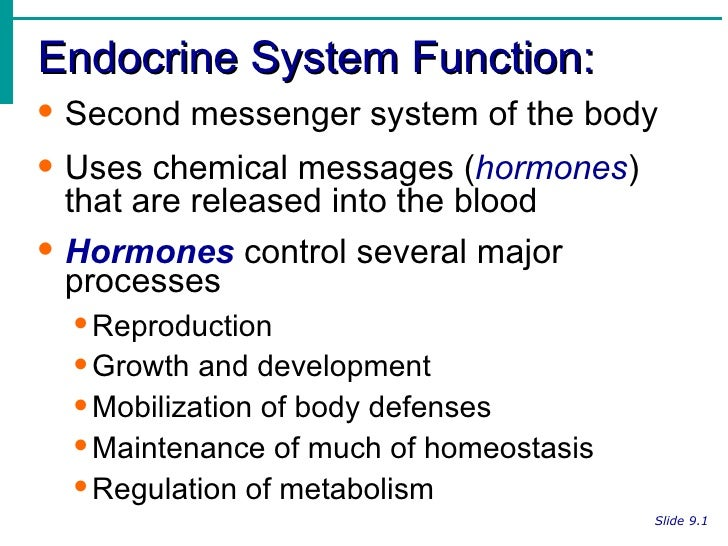 steroid functions body