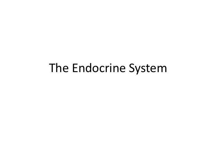 4/10 Endocrine system