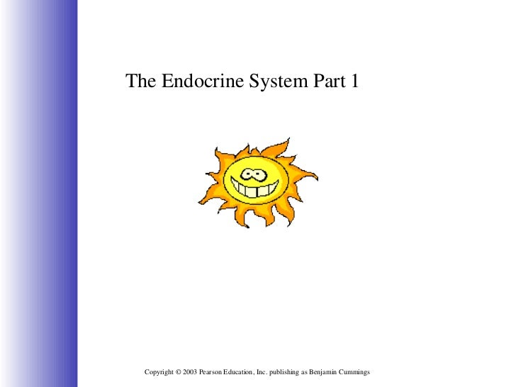 Copyright © 2003 Pearson Education, Inc. publishing as Benjamin Cummings The Endocrine System Part 1