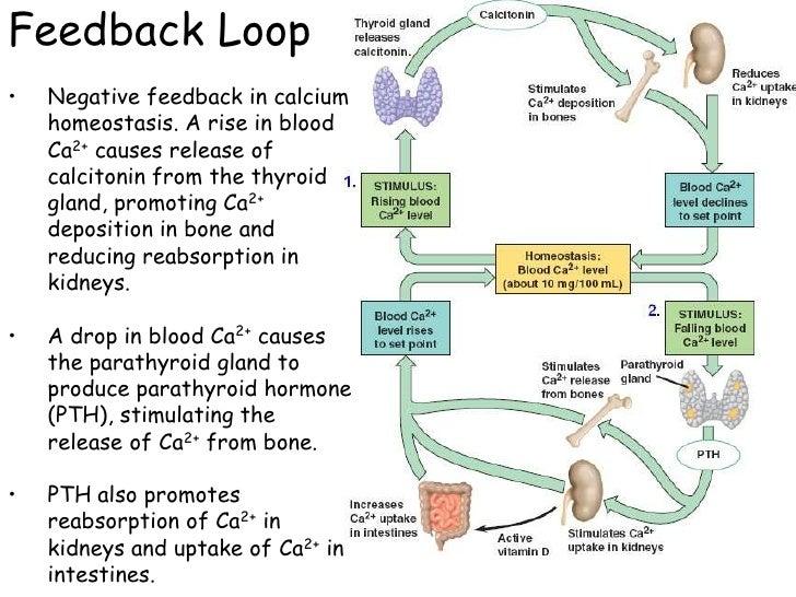 corticosteroids glandular fever