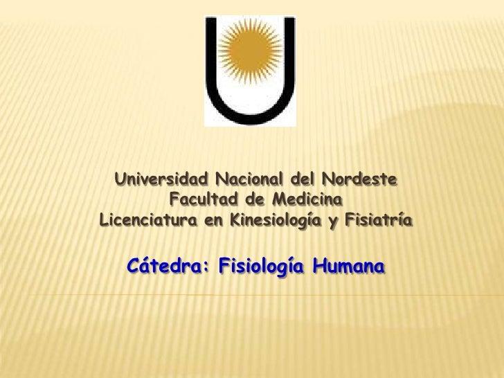 Universidad Nacional del Nordeste<br />Facultad de Medicina<br />Licenciatura en Kinesiología y Fisiatría<br />Cátedra: Fi...
