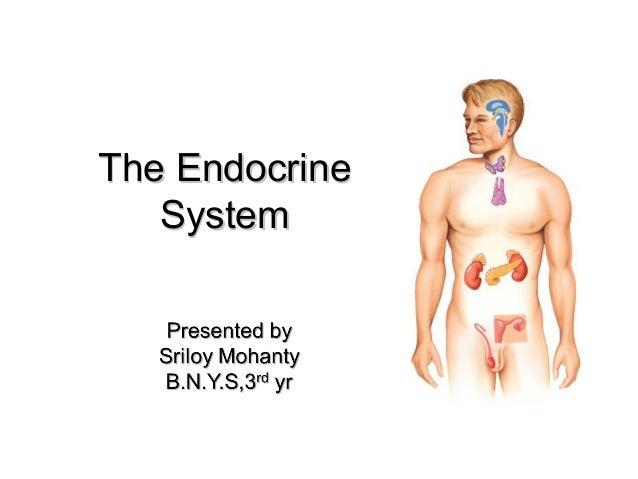 The EndocrineThe EndocrineSystemSystem