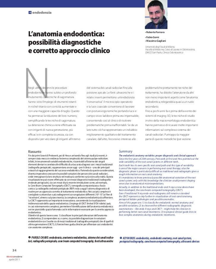 P endodonzia                    L'anatomia endodontica:                                                                   ...