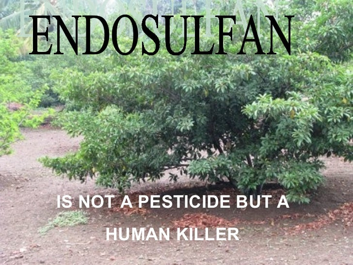 ENDOSULFAN IS NOT A PESTICIDE BUT A HUMAN KILLER
