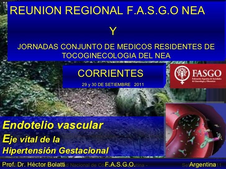 Endotelio vascular  E je vital de la  Hipertensión Gestacional Prof. Dr. Héctor Bolatti  F.A.S.G.O.  Argentina REUNION REG...