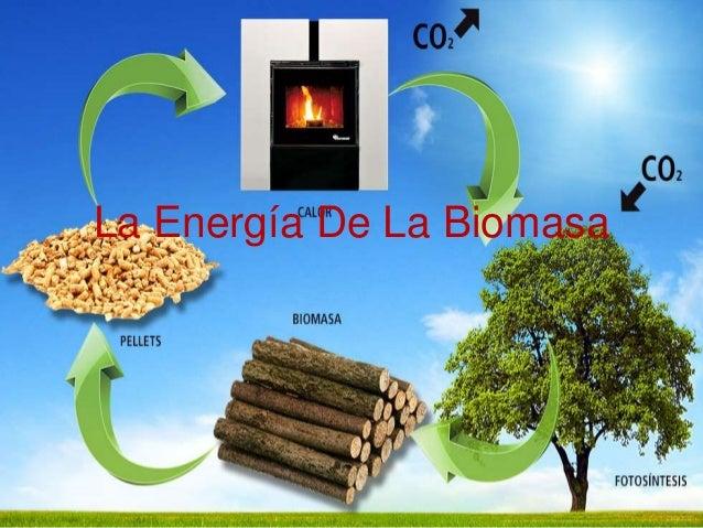 Energía de la biomasa.