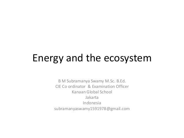 Energy and the ecosystem IGCSE