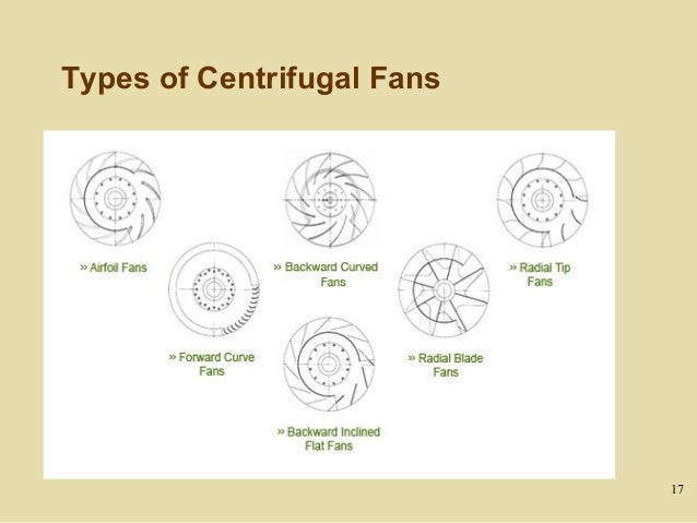 Types Of Fans : Day fans and pumps