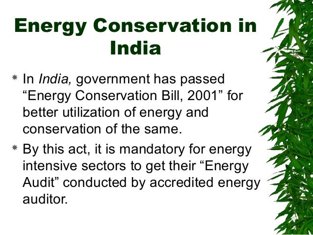 conservation of energy at home essay