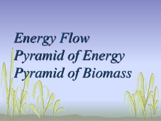 Energy Flow Pyramid of Energy Pyramid of Biomass