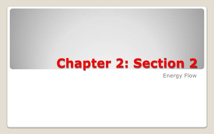 Chapter 2: Section 2                Energy Flow