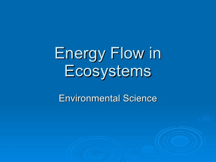 Energy Flow in Ecosystems Environmental Science