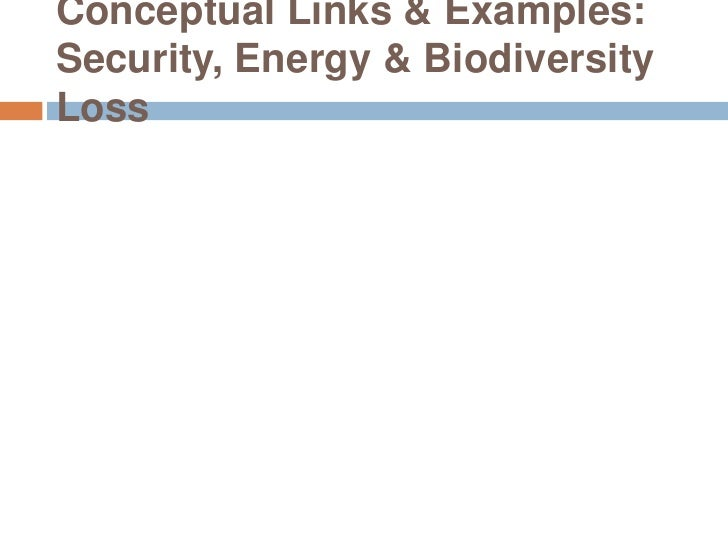 Conceptual Links & Examples: Security, Energy & Biodiversity Loss<br />