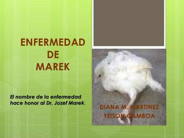 ENFERMEDAD DE MAREK<br />El nombre de la enfermedad hace honor al Dr. Jozef Marek.<br />DIANA M. MARTINEZ<br />YEISON GAMB...