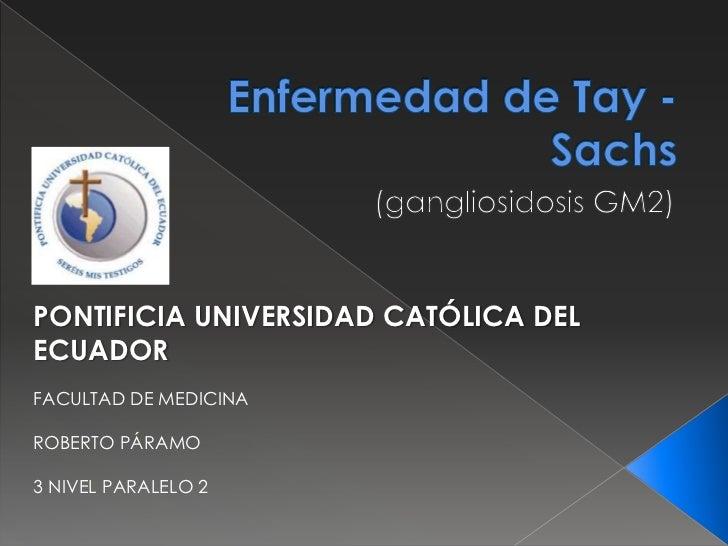 PONTIFICIA UNIVERSIDAD CATÓLICA DELECUADORFACULTAD DE MEDICINAROBERTO PÁRAMO3 NIVEL PARALELO 2