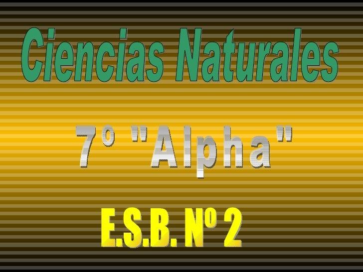 "Ciencias Naturales 7º ""Alpha"" E.S.B. Nº 2"