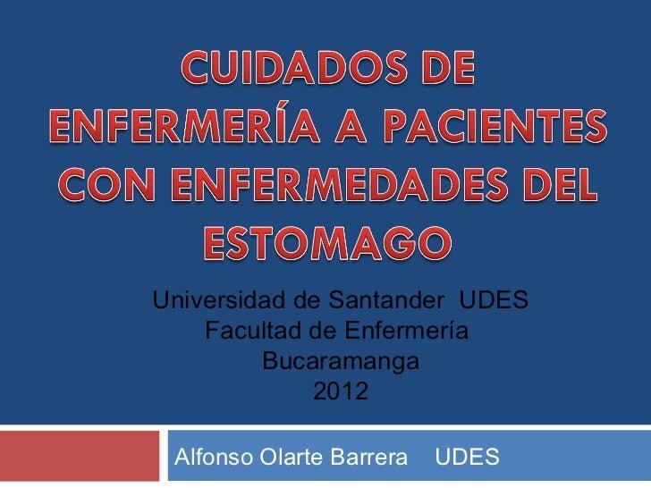 Universidad de Santander UDES    Facultad de Enfermería         Bucaramanga             2012 Alfonso Olarte Barrera   UDES