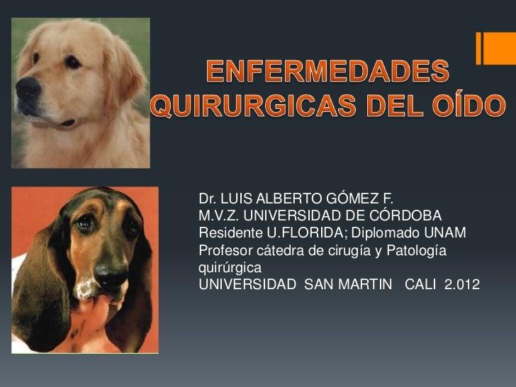 M ED AD ES OÍD O             Dr. LUIS ALBERTO GÓMEZ F.             M.V.Z. UNIVERSIDAD DE CÓRDOBA             Residente U.F...