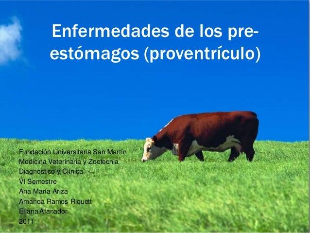 Enfermedades de los pre-         estómagos (proventrículo)Fundación Universitaria San MartínMedicina Veterinaria y Zootecn...