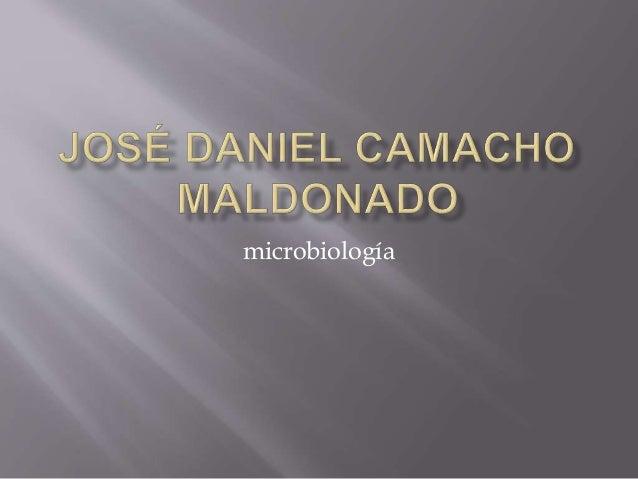 Enfermedades micoticas microbiologuia
