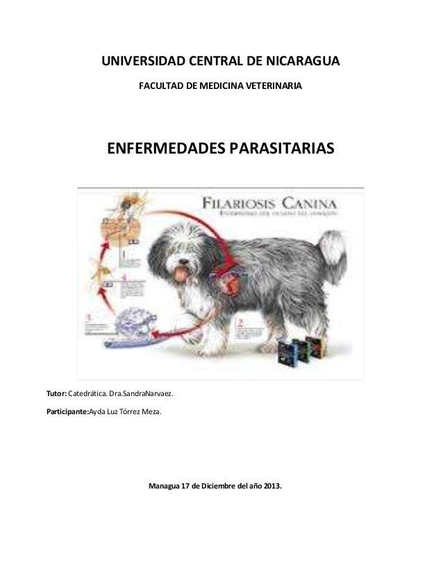 Enfermedades parasitarias final