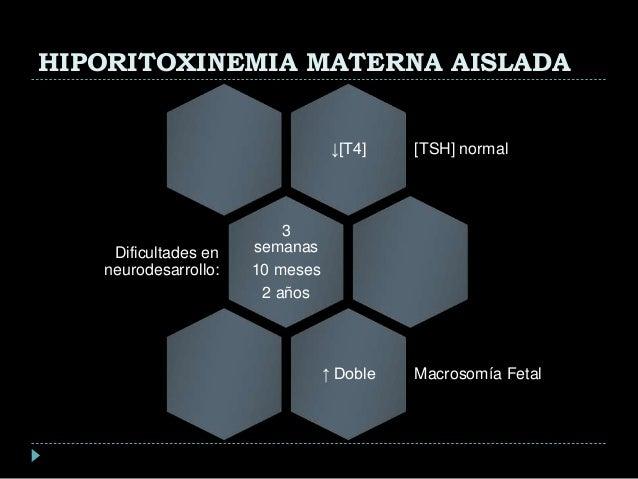 prednisone maximum dosage