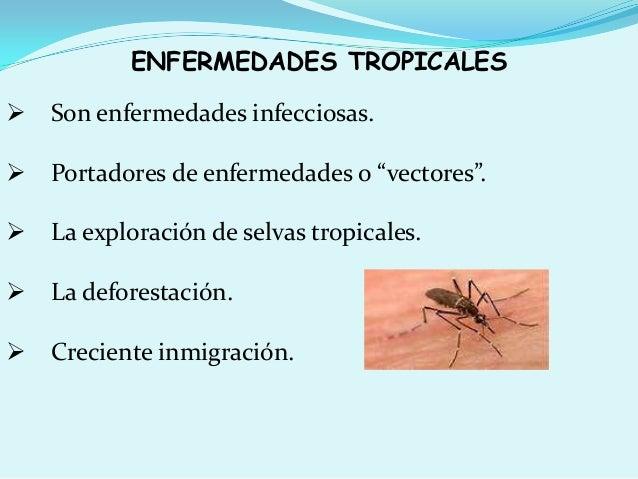 """ENFERMEDADES TROPICALES  Son enfermedades infecciosas.  Portadores de enfermedades o """"vectores"""".  La exploración de sel..."""