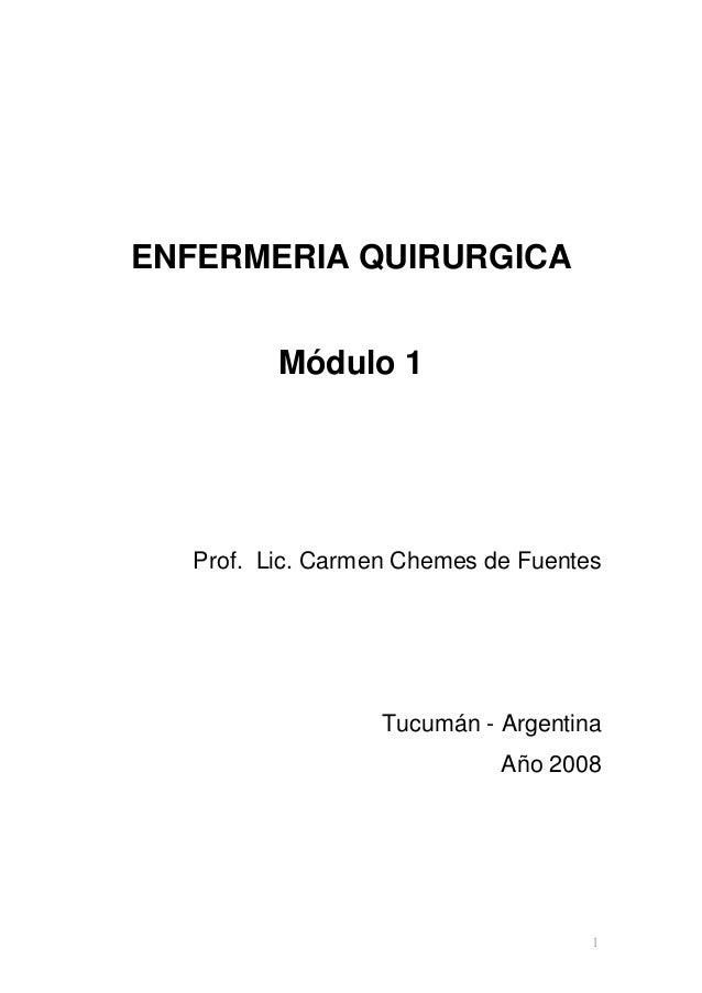 ENFERMERIA QUIRURGICA Módulo 1  Prof. Lic. Carmen Chemes de Fuentes  Tucumán - Argentina Año 2008  1