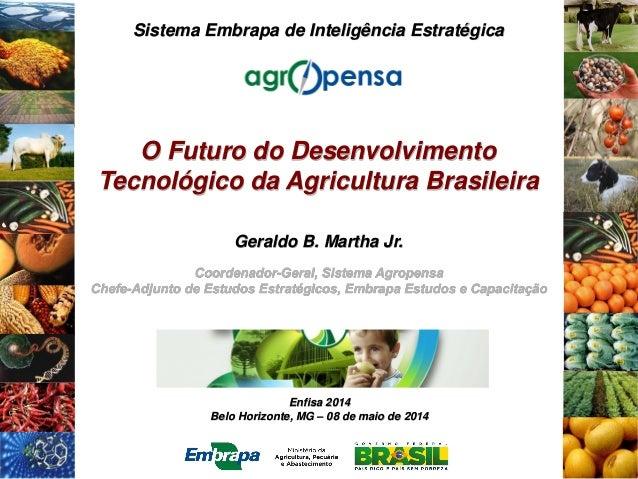 Enfisa 2014 Belo Horizonte, MG – 08 de maio de 2014 Sistema Embrapa de Inteligência Estratégica O Futuro do Desenvolviment...