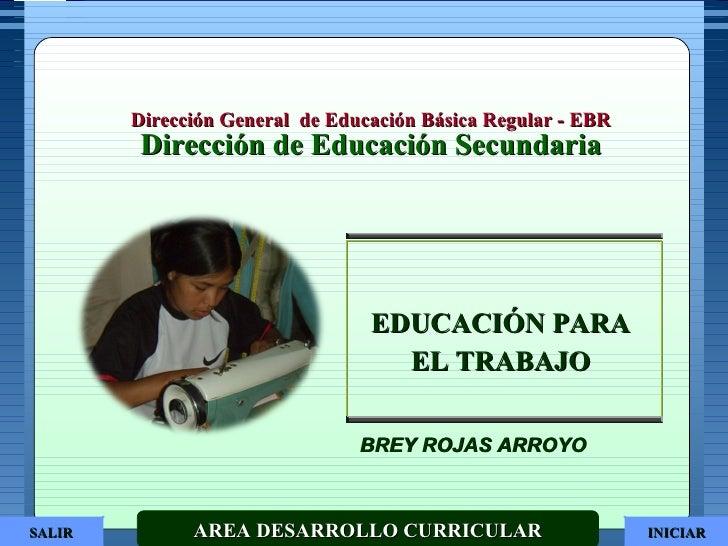Dirección General  de Educación Básica Regular - EBR Dirección de Educación Secundaria AREA DESARROLLO CURRICULAR EDUCACIÓ...
