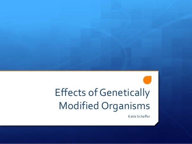 Effects of Genetically Modified Organisms Katie Schaffer