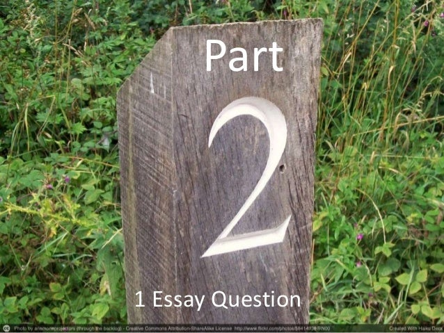 essay questions over the outsiders