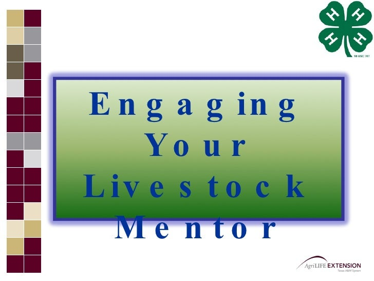 Engaging Your Mentor