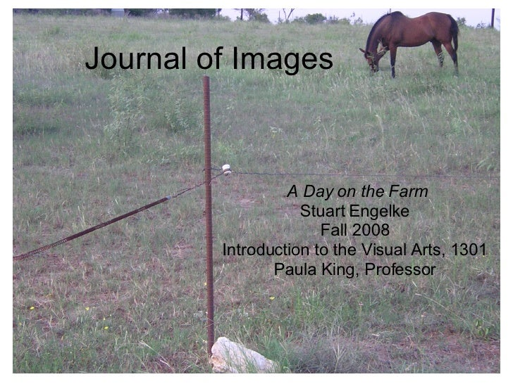 Journal of Images A Day on the Farm Stuart Engelke Fall 2008 Introduction to the Visual Arts, 1301 Paula King, Professor
