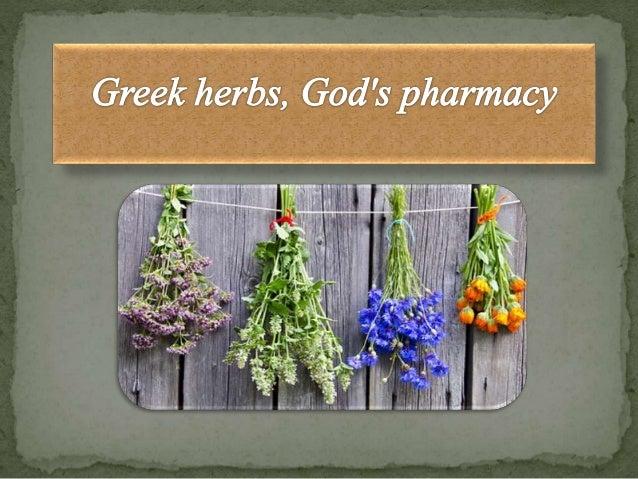 Greek herbs god 39 s pharmacy for God s garden pharmacy