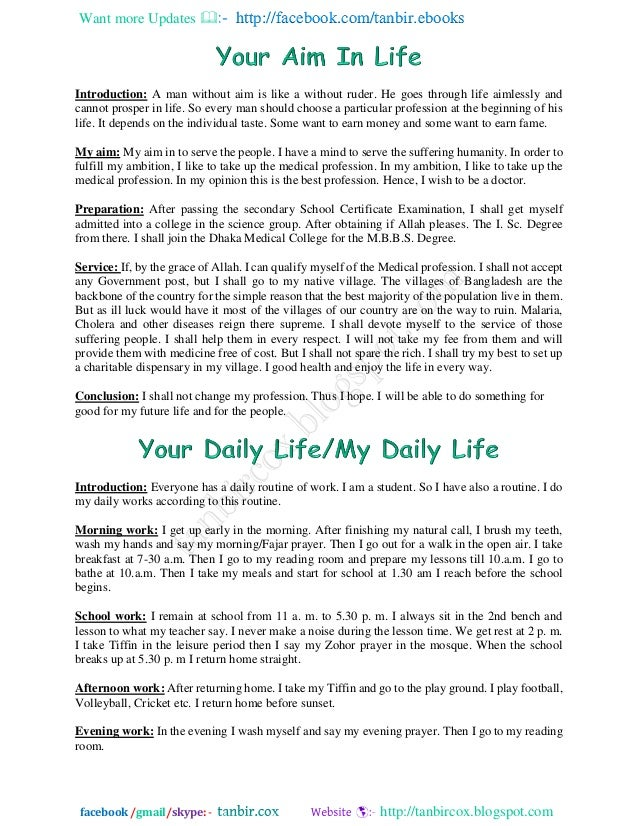 aim in life essay writing