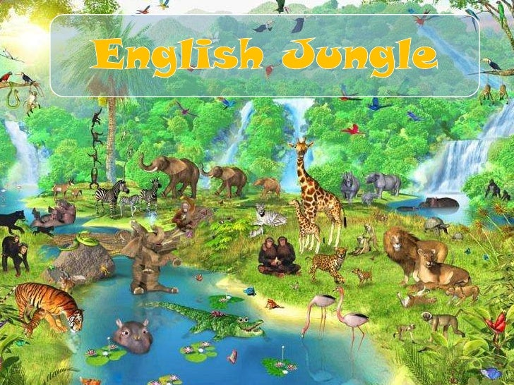 English Jungle