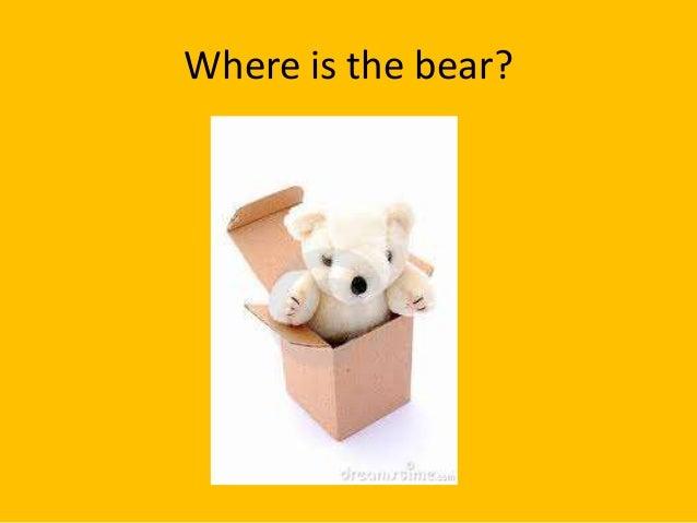 Where is the bear?
