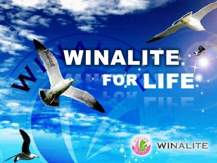 Winalite Opportunity
